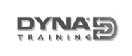 Dyna Training